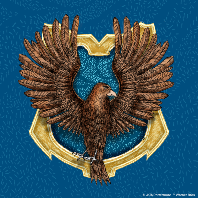 Twitter Profile Image 400 x 400 px Ravenclaw